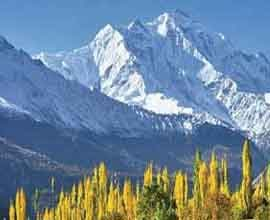 leh ladakh tour packages from delhi by road