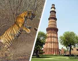 delhi agra ranthambore jaipur tour packages from bangalore