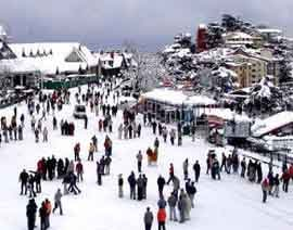shimla group tour package from delhi