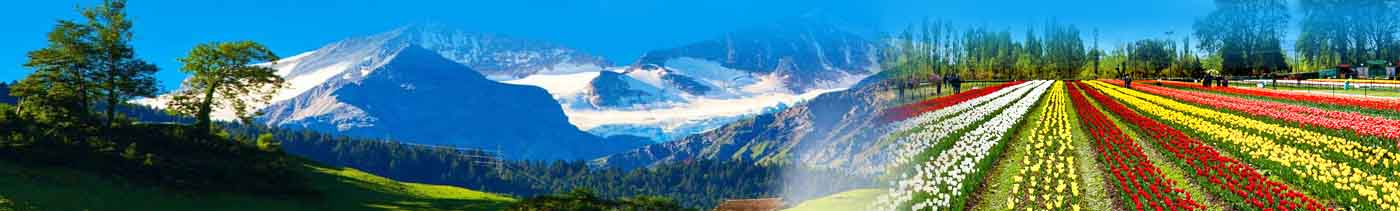 kashmir tour package from delhi with price