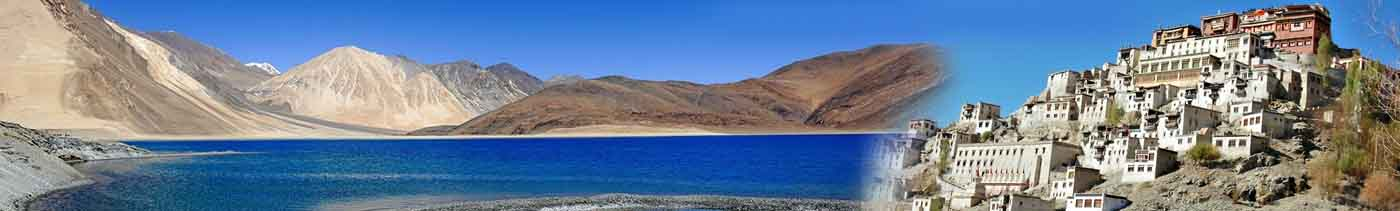 leh ladakh tour packages cost from delhi by road