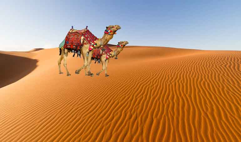 jaisalmer desert safari camp package
