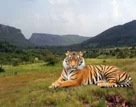 rajasthan adventure tour packages from bangalore